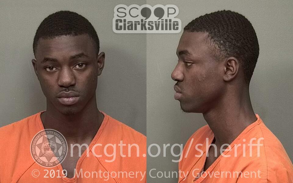 LEWIS MICHAEL JERMAINE TIMMONS (MCSO)