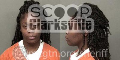 ASHLEY NICOLE  ATKINSON (MCSO)