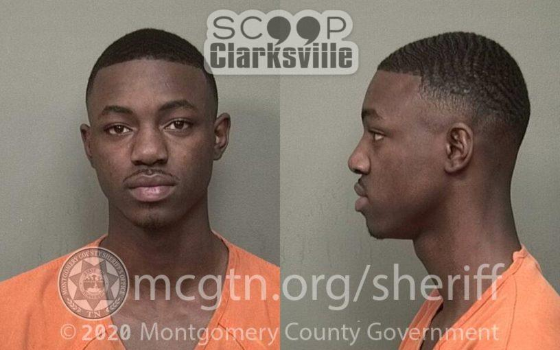 LEWIS MICHAEL  TIMMONS (MCSO)